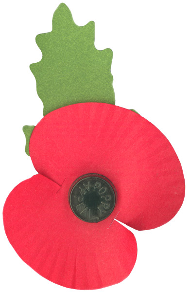 Remembrance Day Poppies Should Remain A Symbol Of Remembrance